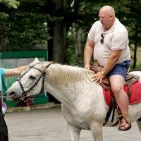 Прокати меня,лошадка.... :: Виолетта