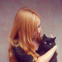 ванильный кот :: Ольга Данилюк