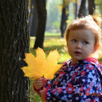 золотая осень :: Виктор Хорьяков