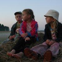 Дети на сене :: Anna Anisimova