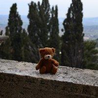 Italy, view, teddy-bear :: Marina Kuznetsova