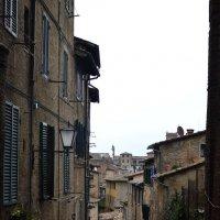 Italy, Siena :: Marina Kuznetsova