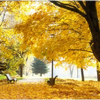Осень золотая :: Александр Горбачев