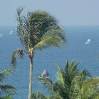 Остров Ломбок Вид на океан :: Жанна Дек