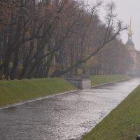 Осенняя пора... :: Irina Sergeeva
