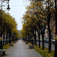 В городе осень... :: Irina Sergeeva