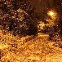 Снег в Иерусалиме :: Максим Пинчук