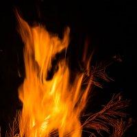 Дух огня :: Андрей Васильченко