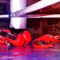 инструменты боксёра :: Dina Vasileva