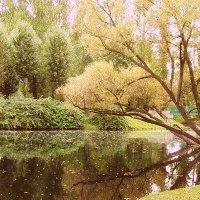 Осень в парке :: vadim