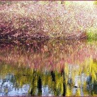Отражение осени :: vadim