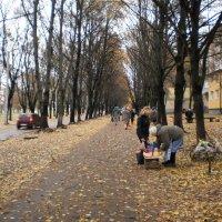 Осенние перспективы - 5 :: Наталья Тимошенко