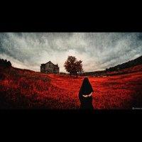 The Scarlet Garden :: Дмитрий Щекочихин