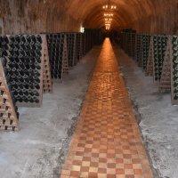 На заводе шампанских вин в Абрау-Дюрсо :: Константин Жирнов