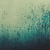 лес на окне:) :: Полина Сизикова