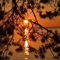 Выборгский залив - Закат :: Жанна Дек