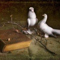 Несколько слов о любви :: Ирина Данилова