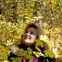 Золотая осень. :: Николай Сидаш