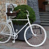 Белый велосипед :: Нина Бартоломеу