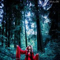 Невеста лесного бога :: Владимир Мещеряков