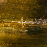 Пульс ночного города :: Соня Орешковая (Евгения Муравская)