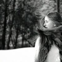 Летучка :: Наталия Лашук
