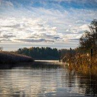 Балтика :: Elena Kuznetsova