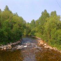 Горная речка :: Ольга Иргит