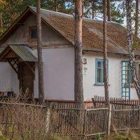 Домик в деревне... :: игорь козельцев
