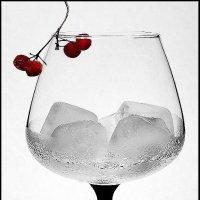 Бокал со льдом :: Светлана Л.