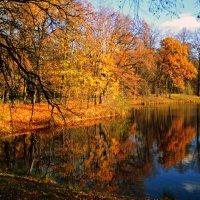 Осень в Елагином.. :: Валентина Потулова