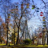Осенний парк :: Андрей Красильников