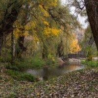 Осенний парк! :: Vadim77755 Коркин