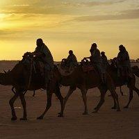 Тунис. Где то в Сахаре)) :: Андрей Андреев