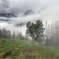В облаках :: Виктория Иванова