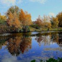 Осень в пойме :: Viktor Eremenko