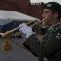 Соло на трубе :: Максим Максимов