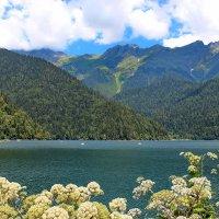 Озеро Рица. :: Наталья Юрова