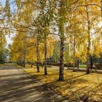 Осень в городе :: Анатолий Казанцев