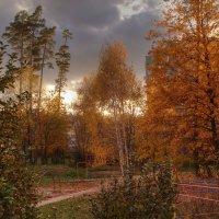 Осенний город 3 :: Владимир