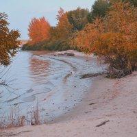 осень на реке дон :: Анастасия Trefilova
