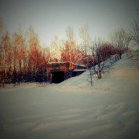 Заброшенная военная база возле Коковино :: Ирина Матвеенко