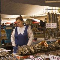 Аквариум рыбьих мумий... :: Владимир Хиль