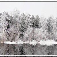 Зимняя сказка :: Valeriy Somonov