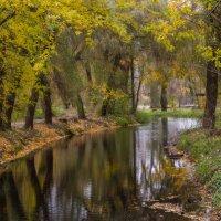 Осень! :: Vadim77755 Коркин