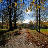 Солнечный день в парке :: Irina Sergeeva