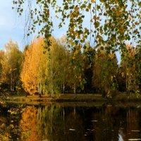 У тихого пруда :: Рашид Рахимов