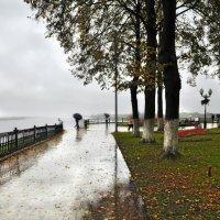 А за дымкою туманной вдалеке видна река :: Ирина Данилова
