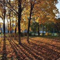 На заходящем солнце :: Диана Задворкина