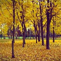 Осенний бал :: Анна Хотылева